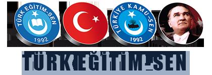 Türk Eğitim Sen – Turkish Education Union